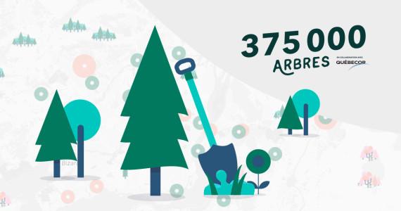plantation_375000_arbres_visuel