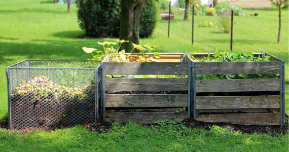 Les petits et grand avantages du composte domestique1