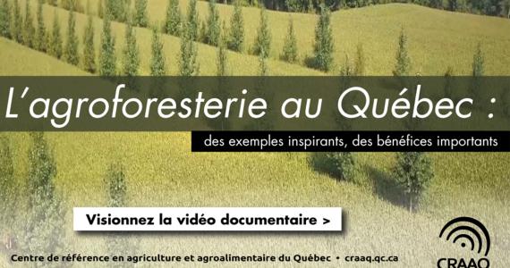 2018_Jour_de_la_terre_craaq_visuel_site_web_page_partenaire_section_vidéo