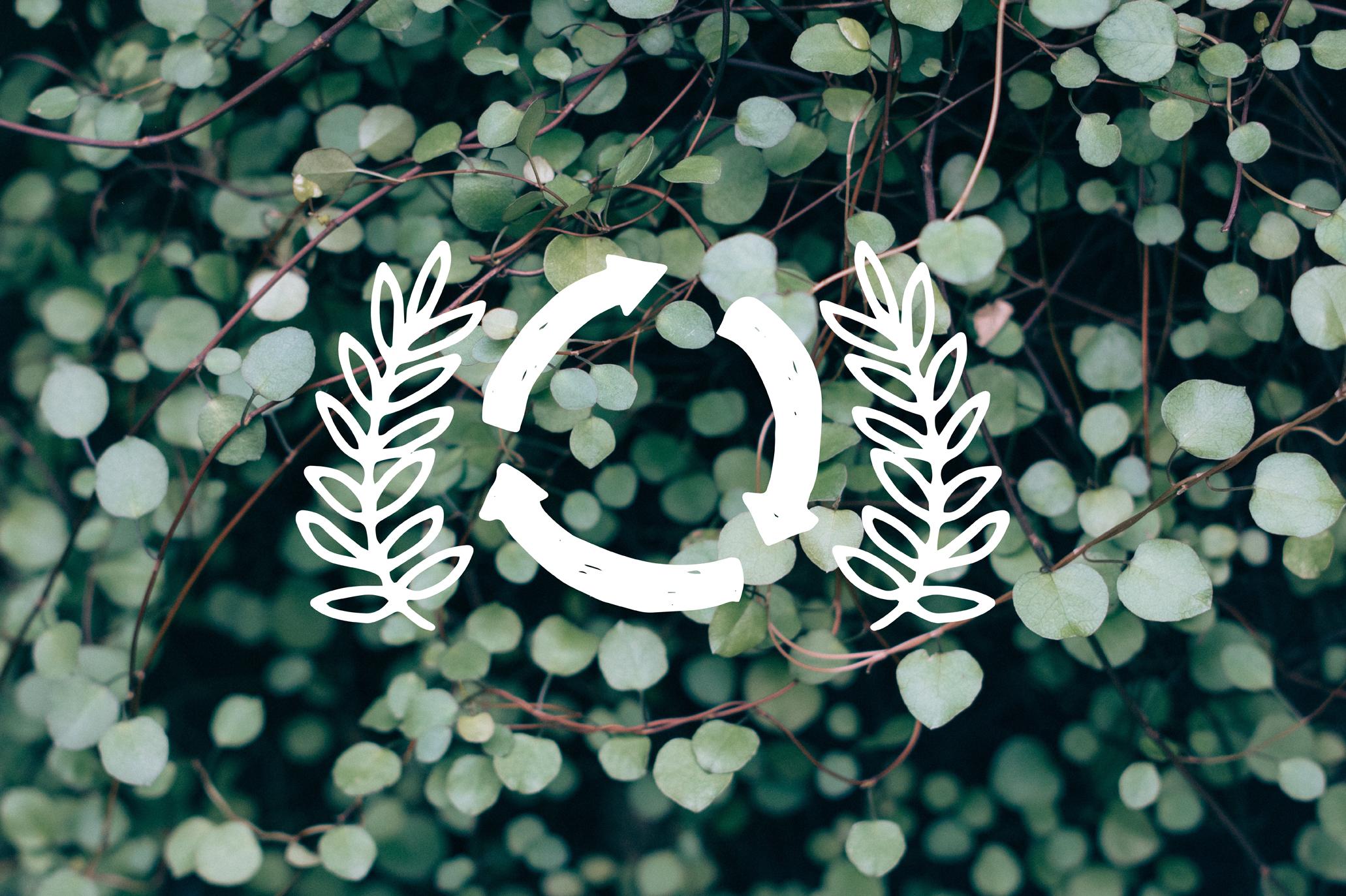 Eco-02---copie