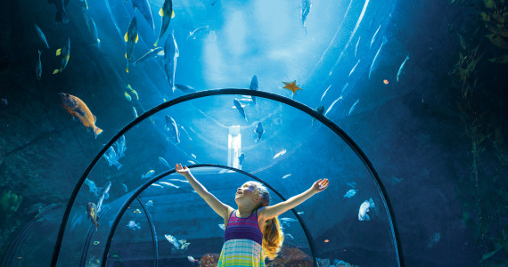 jour_de_la_terre_quebec_qc_22_avril_evenement_demain_la_foret_aquarium