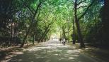 jour_de_la_terre_canada_blogue_bienfaits_verdissement_sante_antoine_3