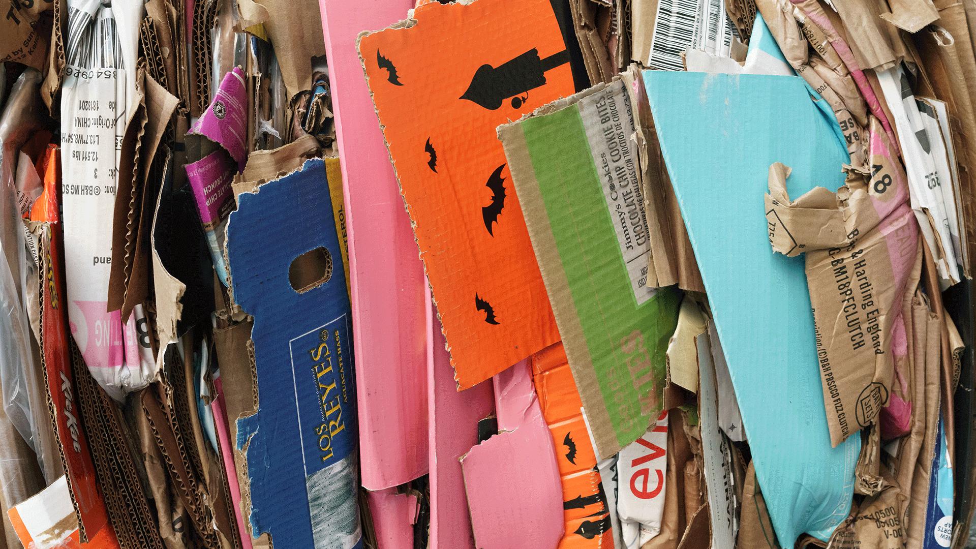 jour_de_la_terre_canada_blogue_recyclage_reflexions_autour_du_bac
